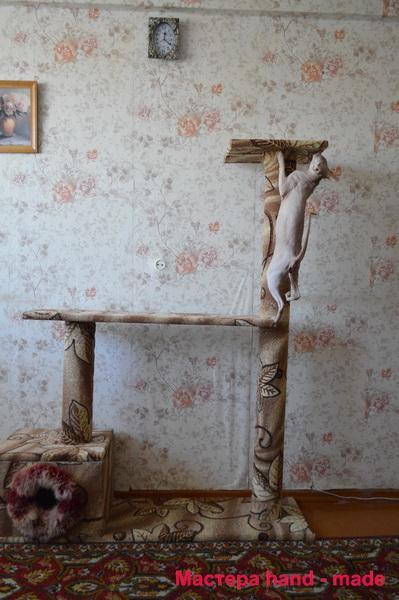 Когтеточка и домик