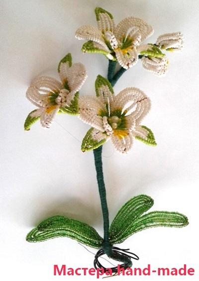 Орхидея-из-бисера