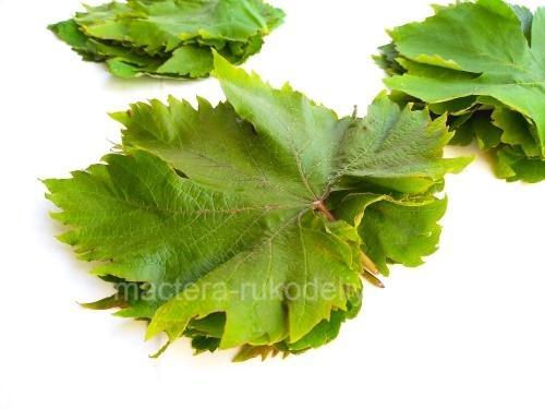 сортируем листья по размеру и количеству